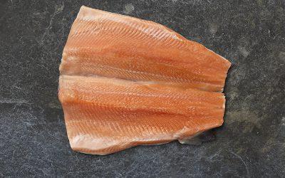 Näistä merkeistä tunnistat tuoreen kalan